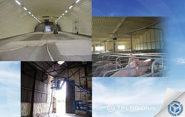 isolation-thermique-anti-condensation-bâtiment-agricole